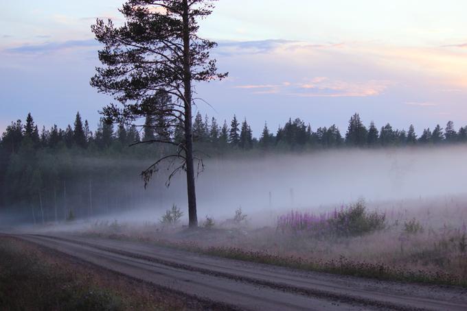 norrland_15.jpg