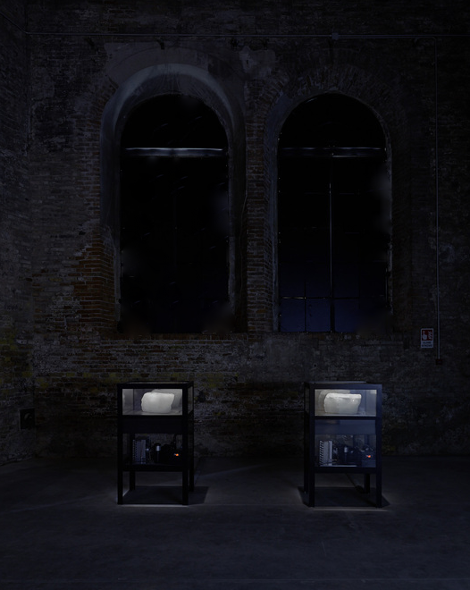 Tavares Strachan polar ice Venice Biennale Me and You.png