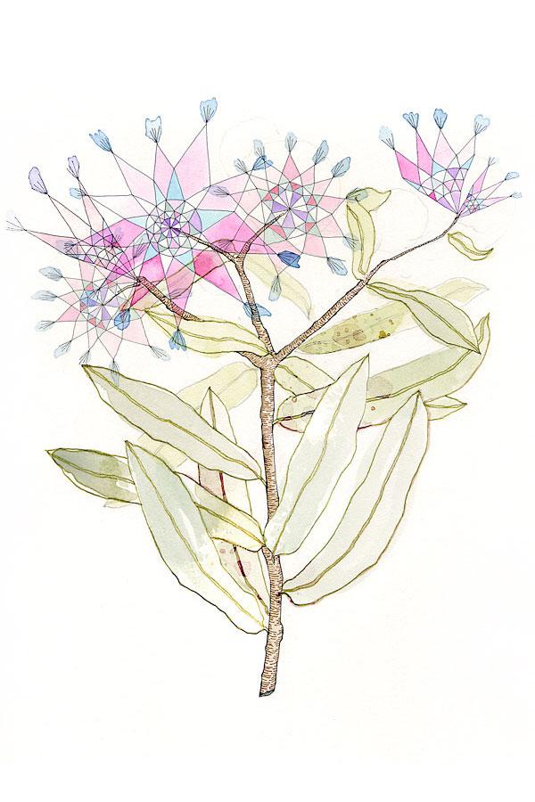 botanical1.jpg