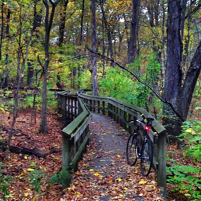 """ Loved the bridges and cyclocross paths that meandered through this section of Forest Park."""