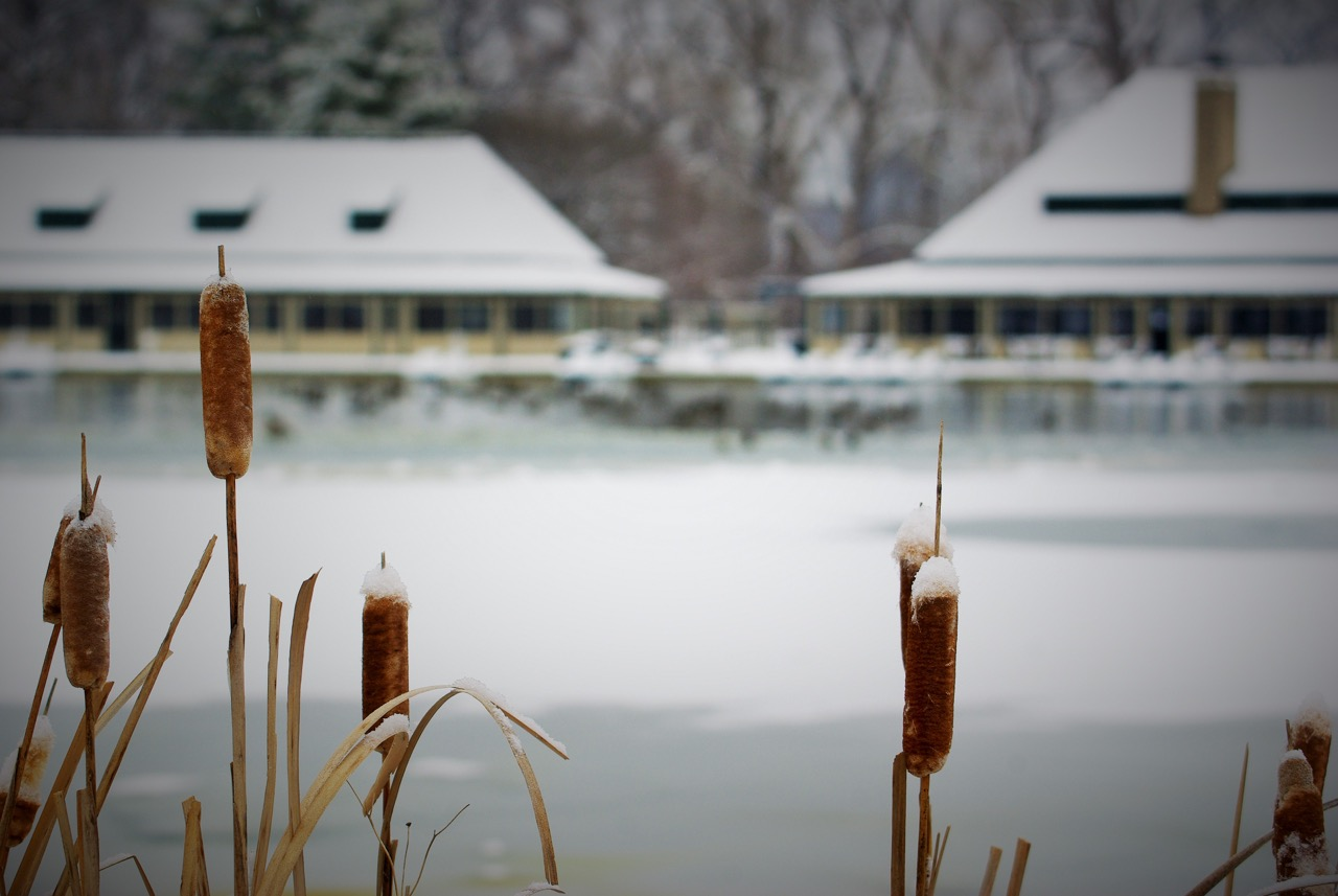 The Boathouse in winter. Photograph by Patrick Greenwald.