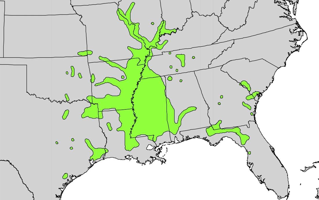 """ Forestiera acuminata  range map"" by U.S. Geological Survey -  Image source"