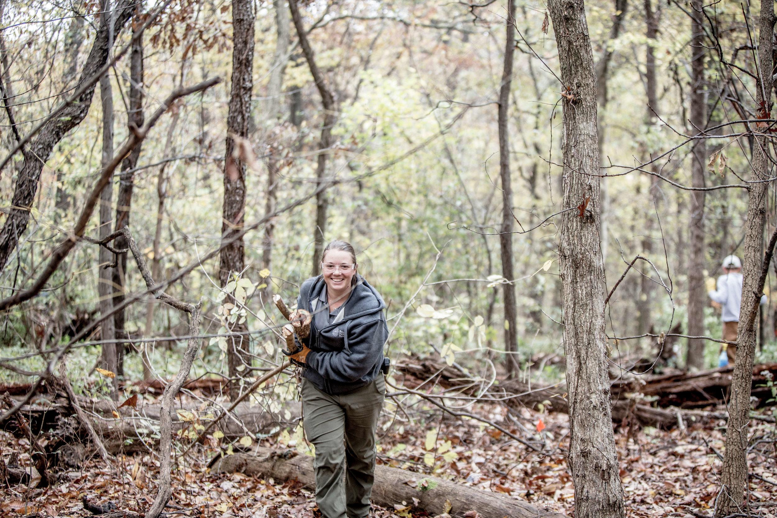 forest park 0755.jpg
