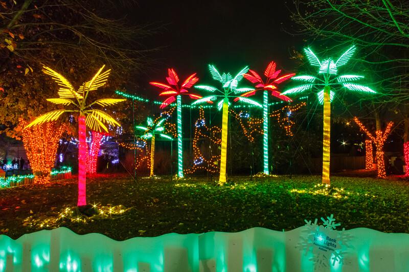 U.S. Bank Wild Lights_Jungle_Roger Brandt Saint Louis Zoo_web-2.jpg