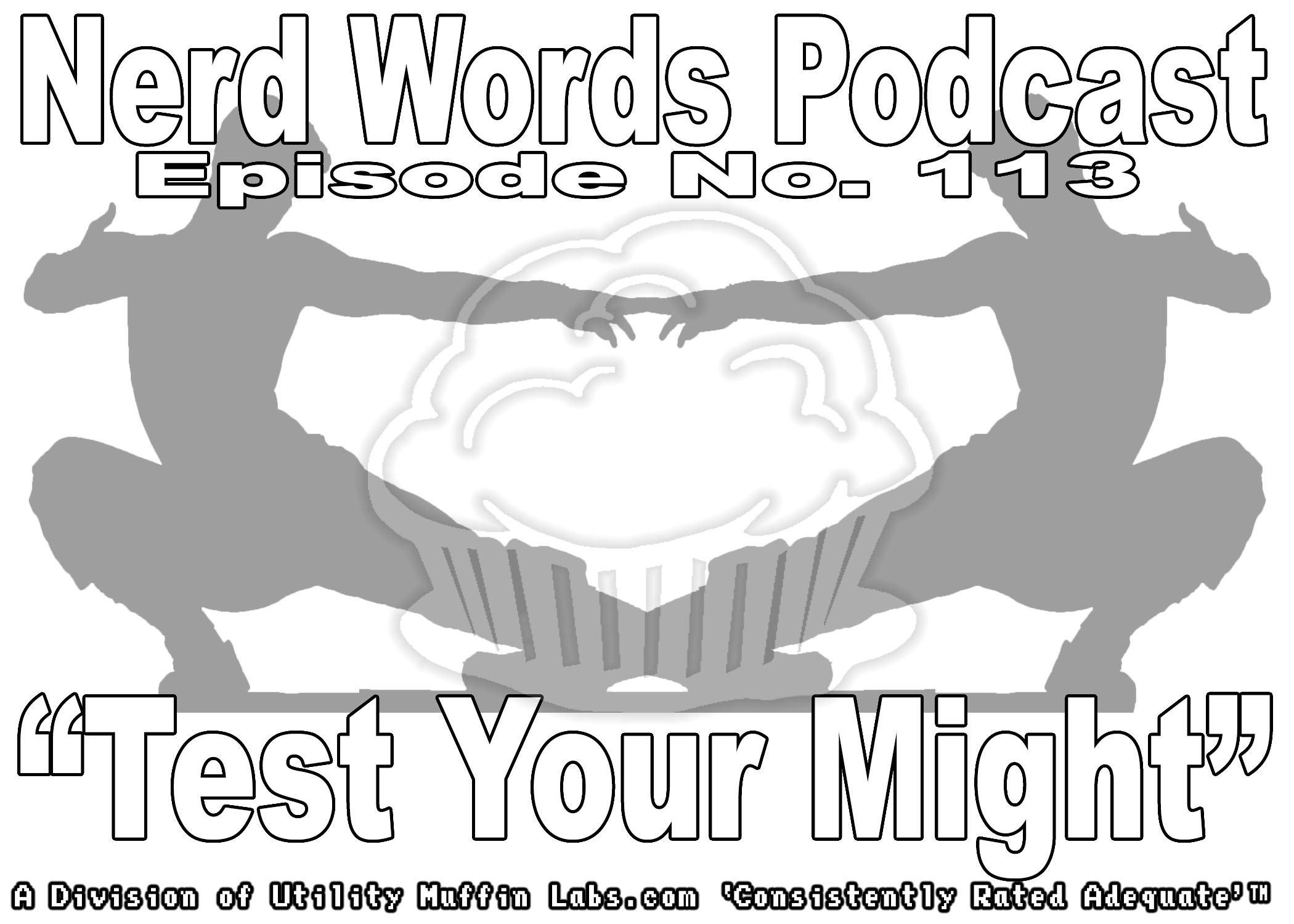 Nerd Words Podcast 113.jpg