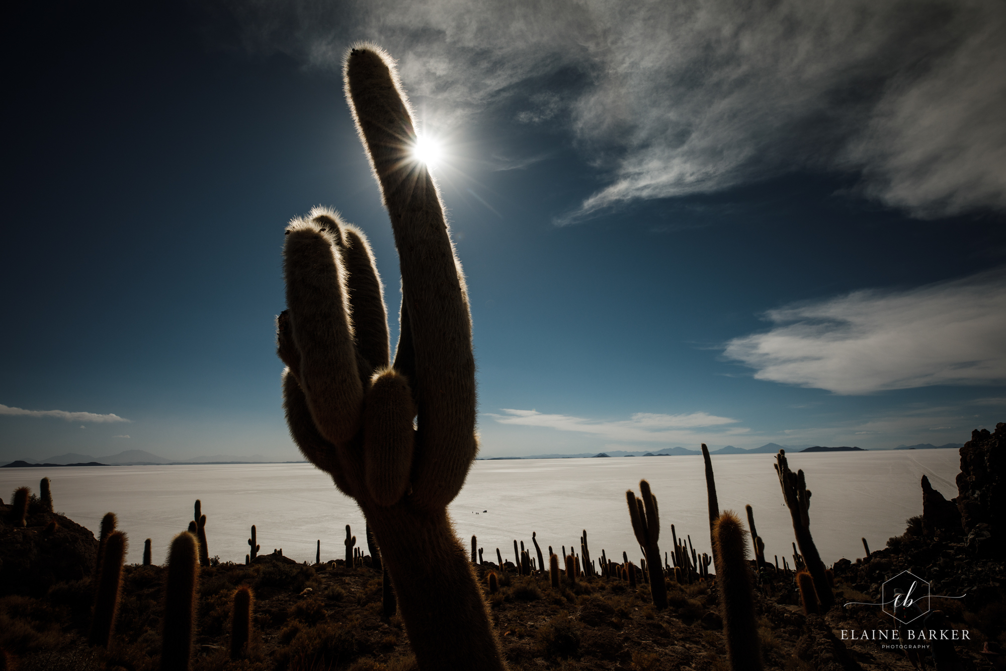 Bolivia94.jpg