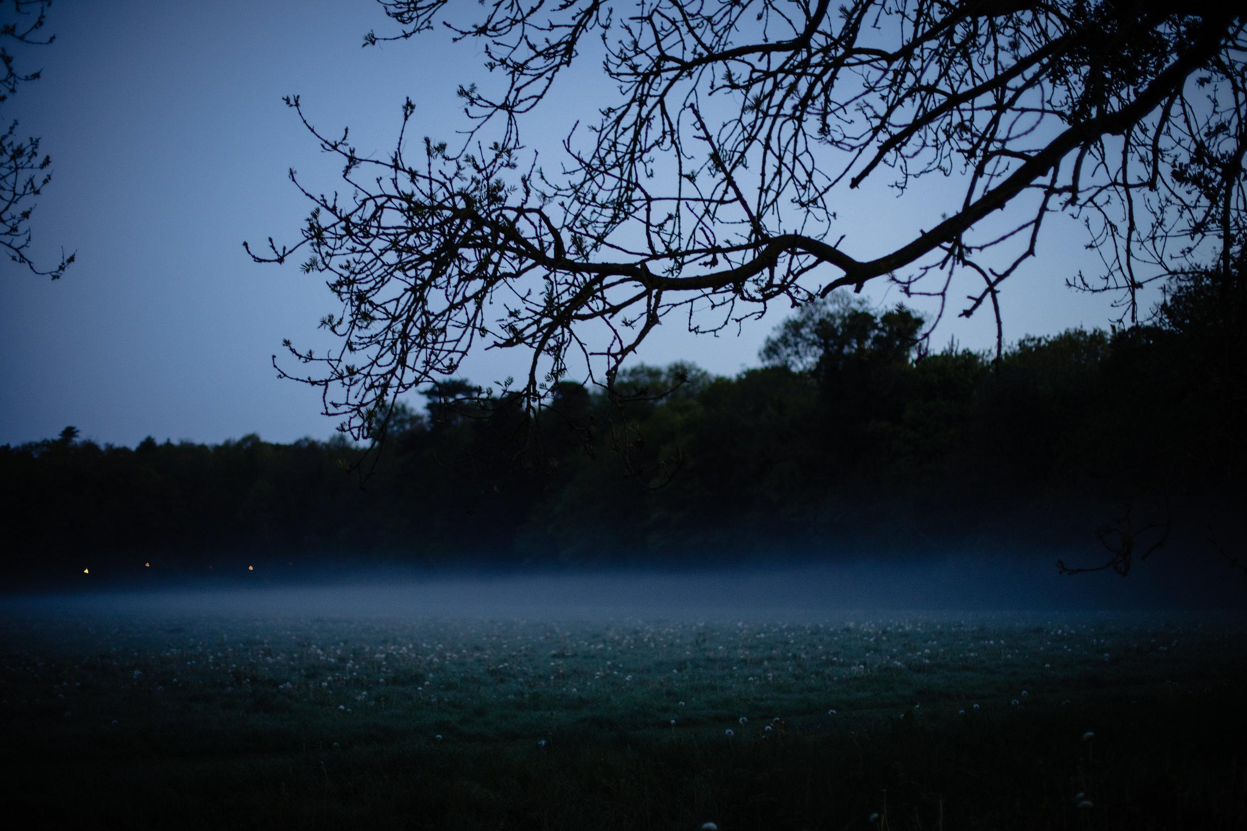 Darknessintolight51.jpg