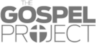 We use Gospel Project curriculum for our kids ages 18 months to 5th grade. It walks through the bible from Genesis to Revelation and every story points to Jesus.