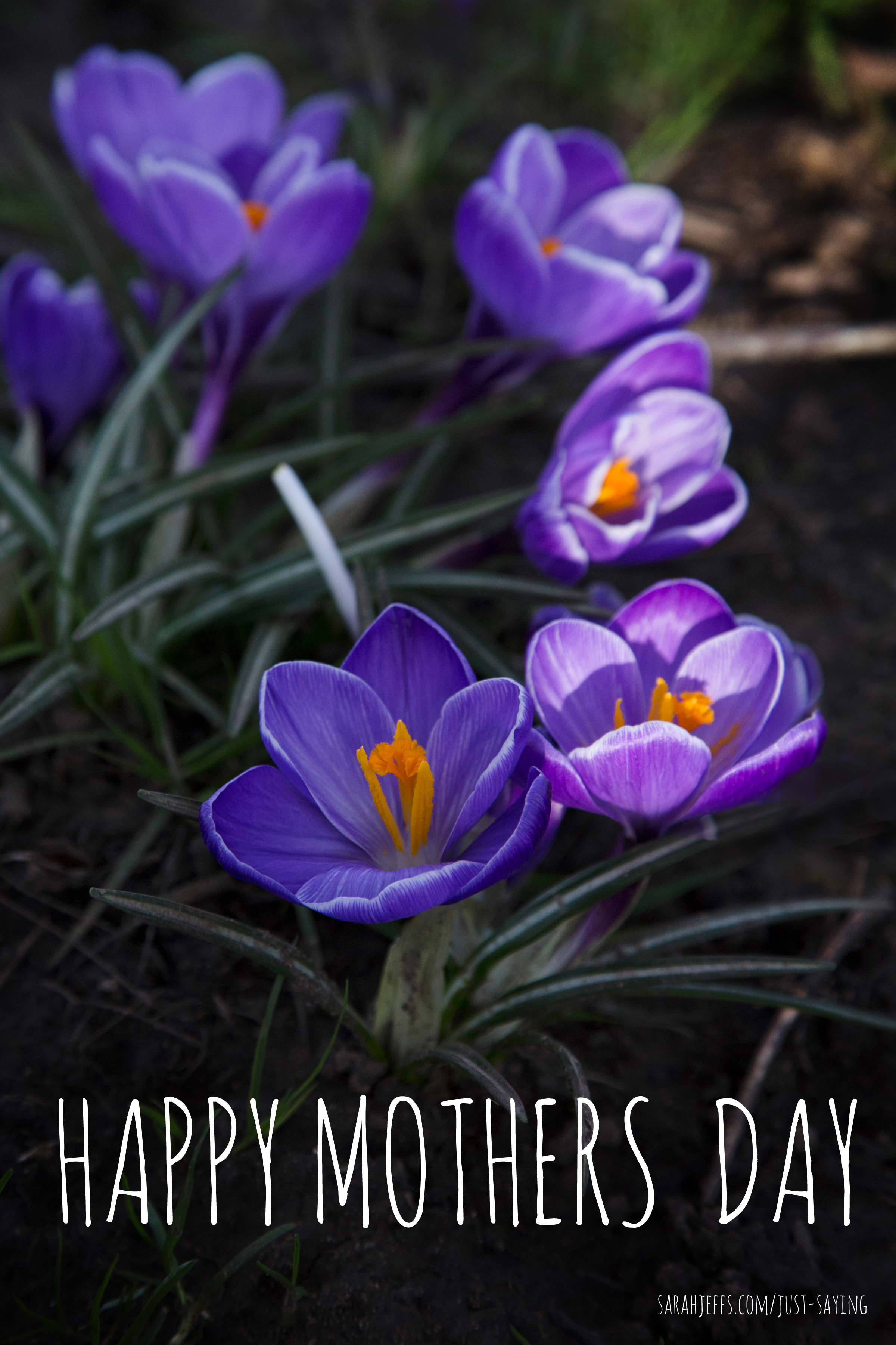 HAPPY-MOTHERS-DAY-2.jpg