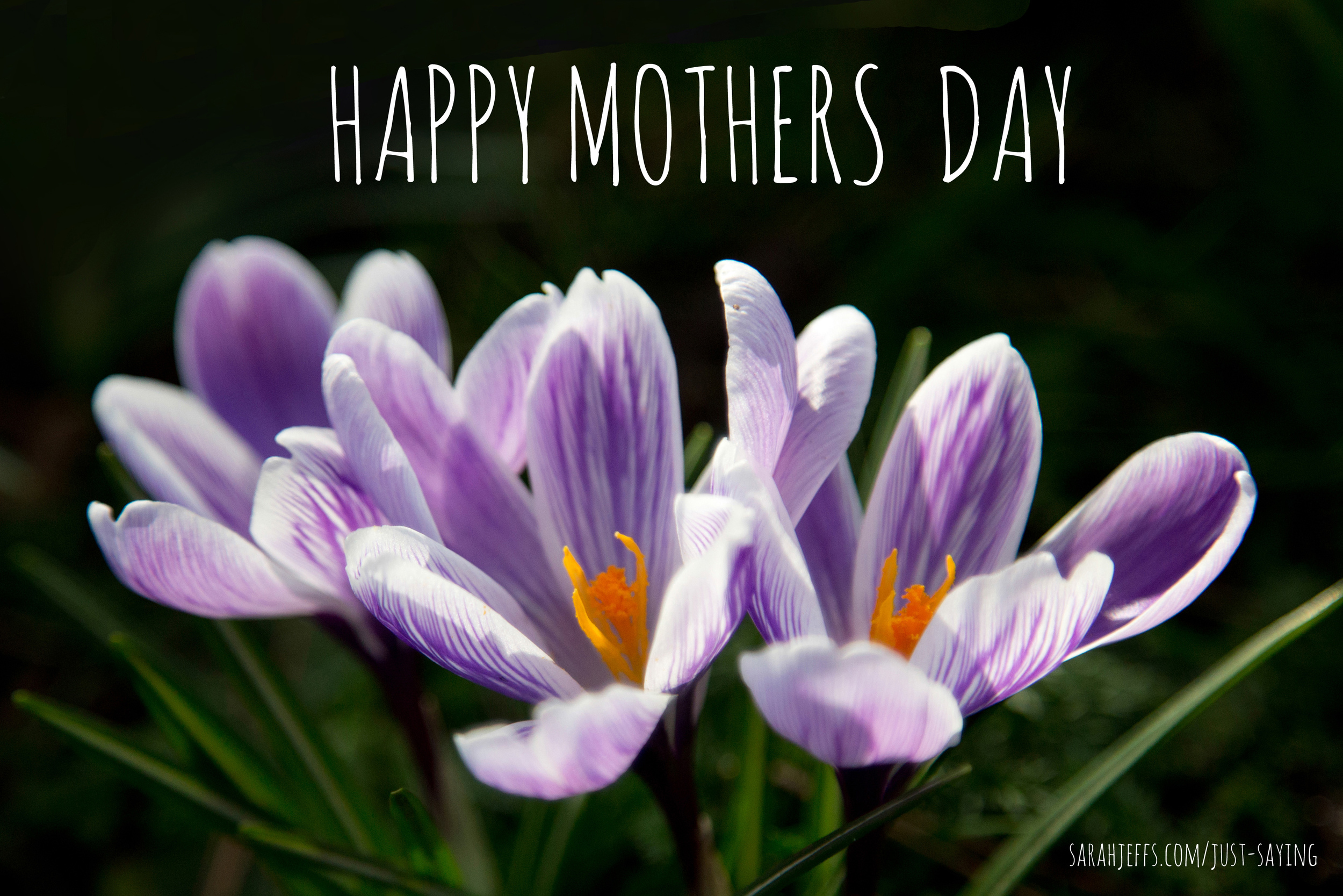HAPPY-MOTHERS-DAY-3.jpg