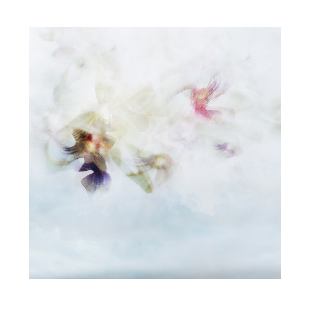 FLOWERBOM 4