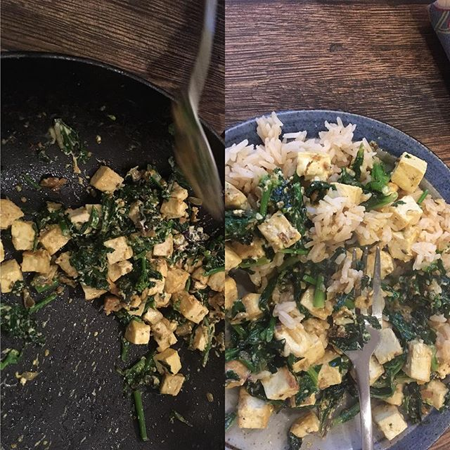 Saag paneerish with tofu, asian greens and kale