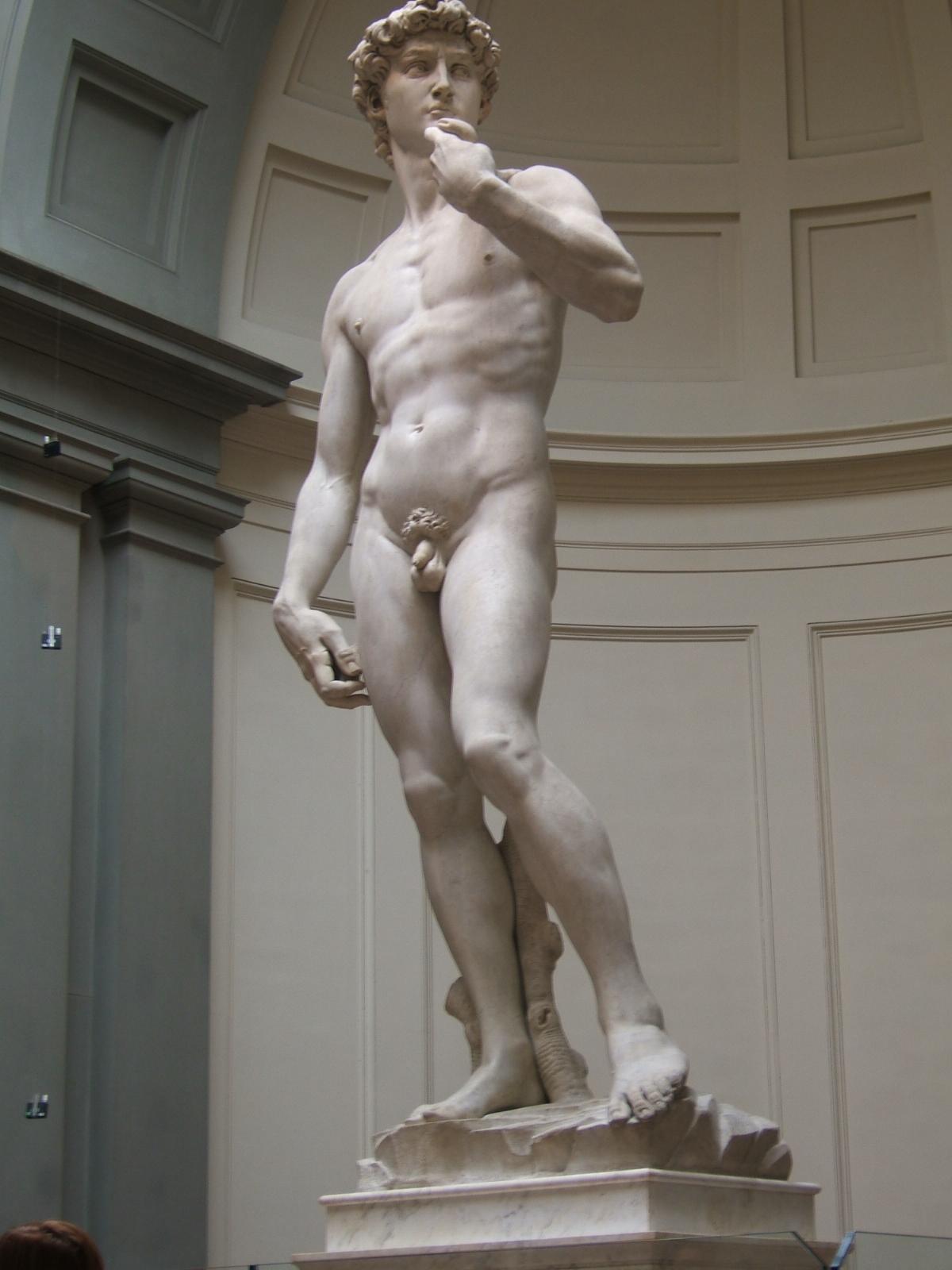 TIPO DE OBRA: Escultura.   TÍTULO: ELDavid.   LOCALIZACIÓN: Galería de la Academia. Florencia (Italia). Hasta 1947 la escultura estuvo situada en la Plaza de la Señoría de la misma ciudad, donde ahora puede contemplarse una copia.   AUTOR: Miguel Ángel Buonarroti (1475-1564).   FECHA: 1501-1504   ESTILO : Renacimiento italiano. Cinquecento. Escultura.