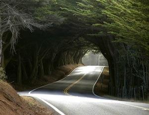 caminos18.jpg