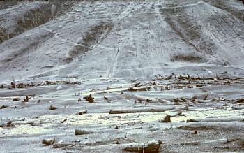 Monte Santa Helena 29 Septiembre 1980