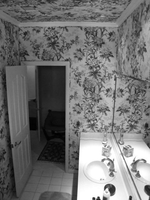Guest Bath Before 03.JPG