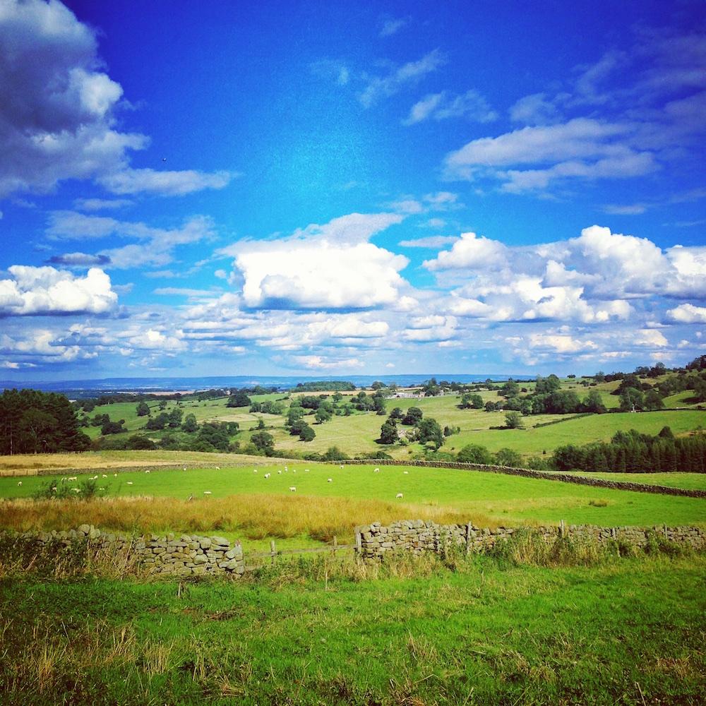 Yorkshire Lincolnshire Countryside Landscape Views Canvas Print Artwork.jpg