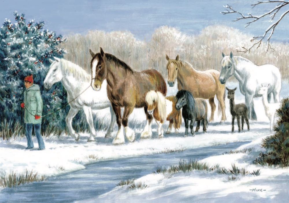 All Together Horse Animal Charity Christmas Cards