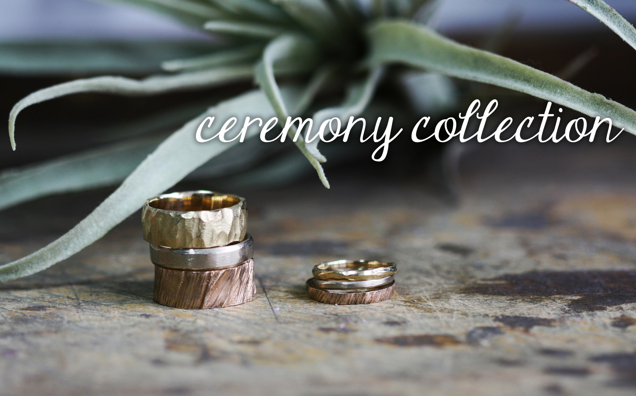 ceremony_collection_bands_plant_text.jpg
