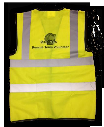 2015-11-14 vest back transp.png