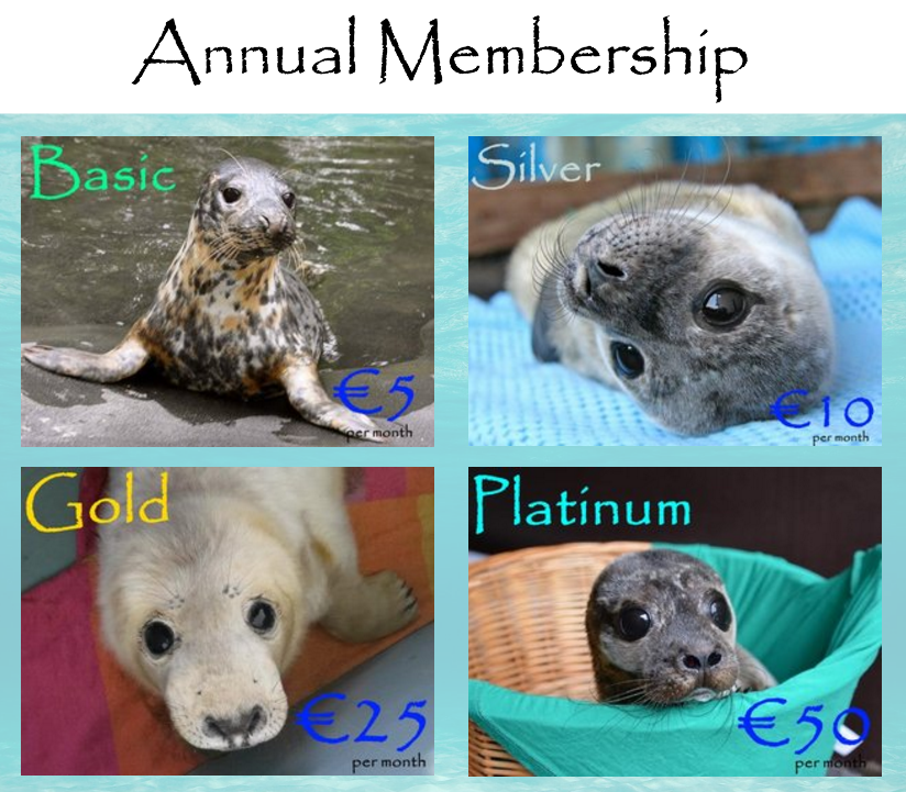 Sign up a loved one for our annual membership program and they will receive loads of benefits!