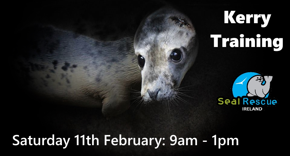 Are you interested in helping rescue seals?   Seal Rescue Network Training in TRALEE, Co. Kerry THIS SATURDAY...    Where: Tralee Bay Wetlands Centre   When: Saturday 11th February 2017   Time: 9:00 am - 1:00 pm    All interested are welcome but RSVP is required. If you have been interested in joining our volunteer network this is a great opportunity to jump right in. As a Seal Rescue Network Volunteer you will be called on to assist with seal rescues in your local area. Seal Rescue Ireland rescues seals from all over Ireland so they need a strong network of trained volunteers to help with seal rescues, monitoring, assessments, and transport.    If you are able to help with any of these tasks please contact us f  or more details. There is a training fee of €35 for this event. Spots are limited - reserve your space today!  To Book your place: Email: volunteersealrescueireland@gmail.com or Call or Text Mel on +44 7920 053875   To Pre-Purchase your membership pack:  http://www.sealrescueireland.org/volunteer-membership/