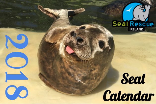 Our 2017 Seal Pup Calender is full of adorable pup pictures and stories to greet you every month! A great gift for people who already have everything!
