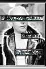 PunkLoveFoucault.JPG