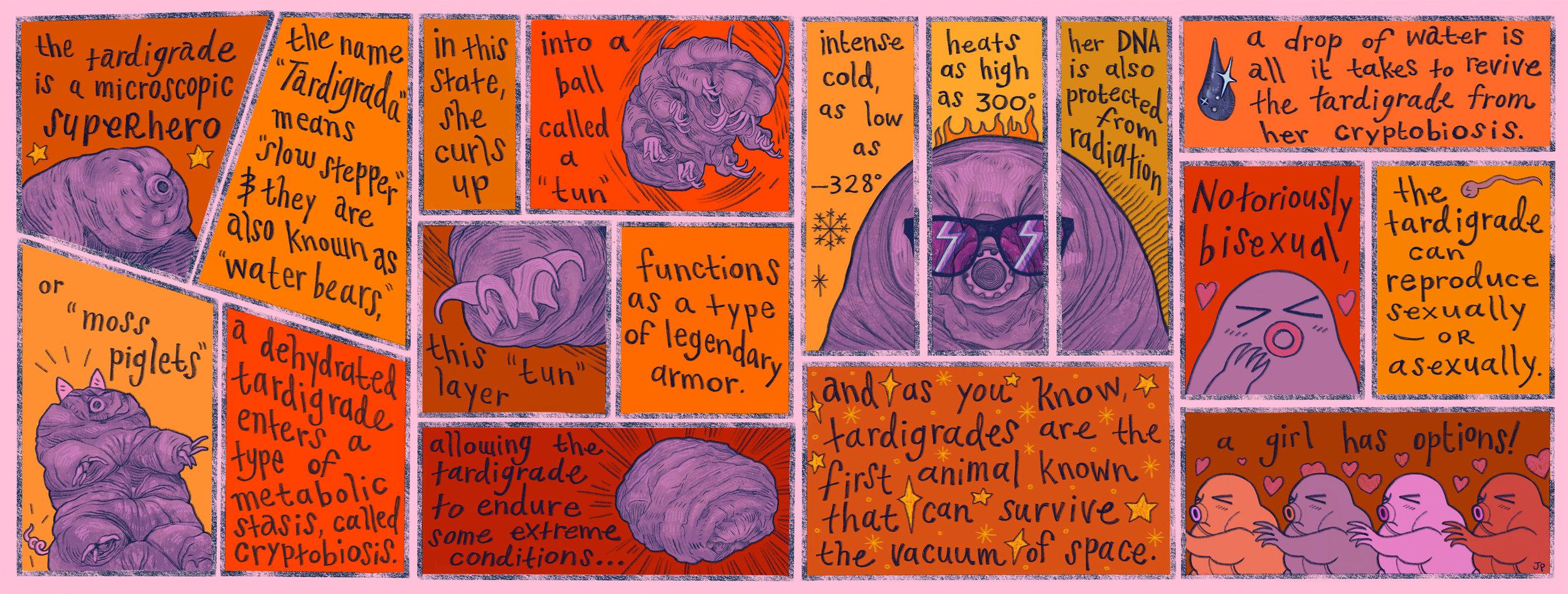 tardigradewe.jpg