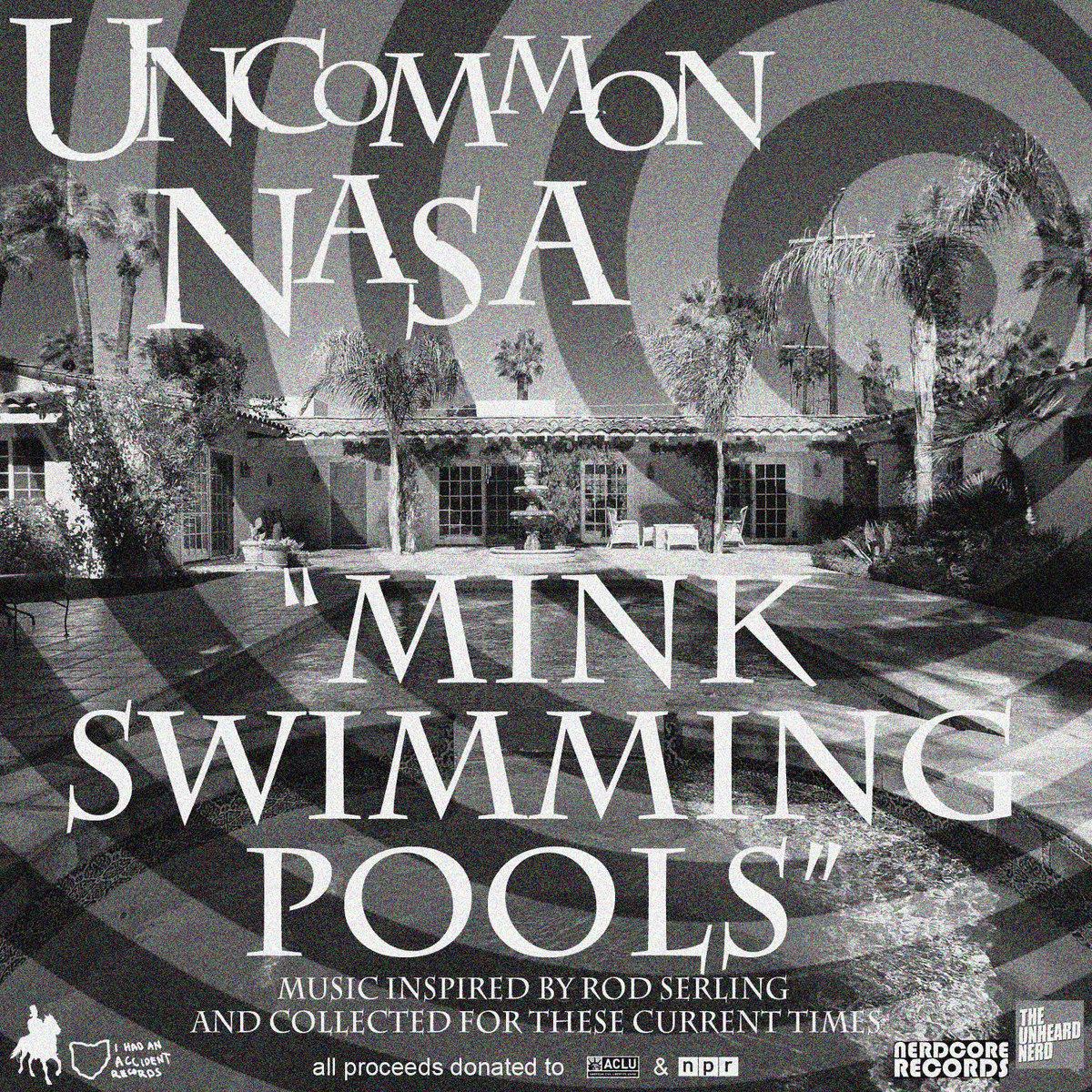 Mink Swimming Pools [2017]