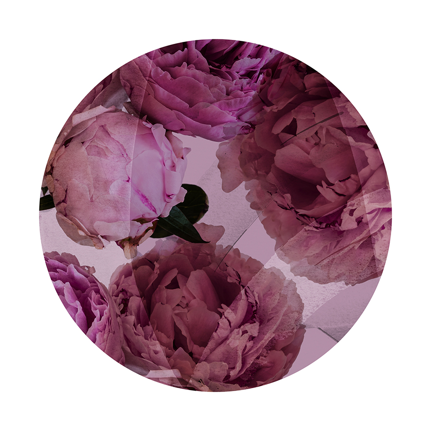 Peonies - Circle Detail - Limited Edition Print