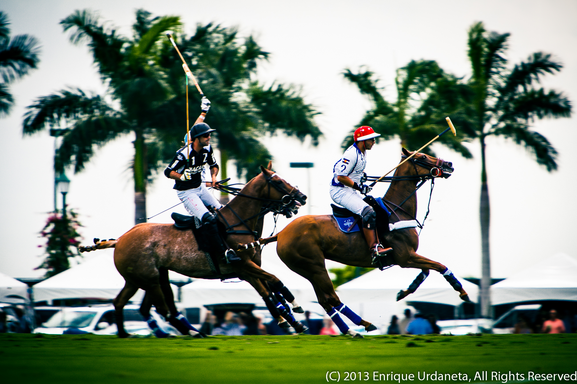 Polo Photographer