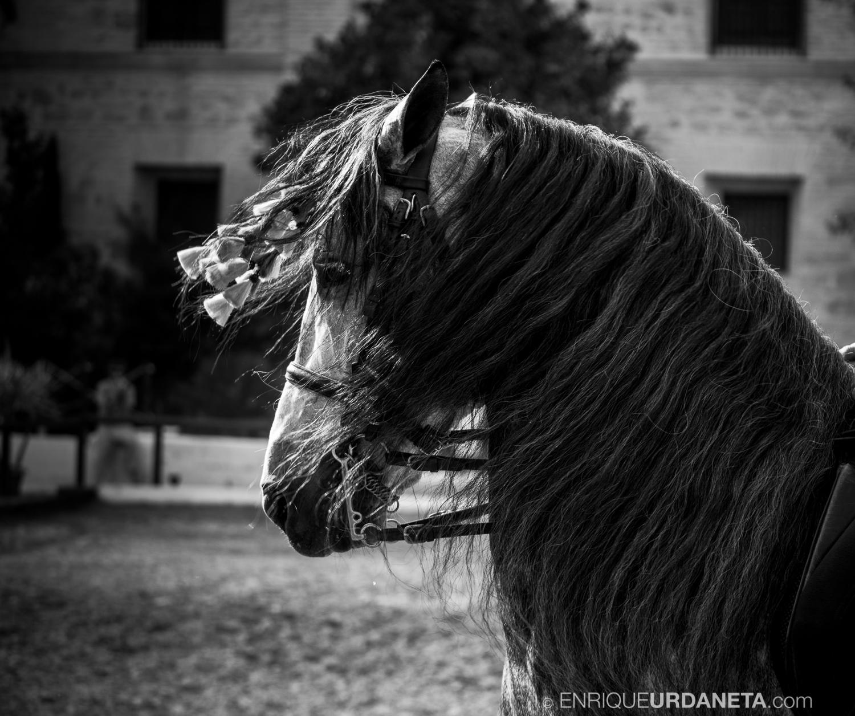 Cordoba-por-Enrique-Urdaneta_20160626-481.jpg