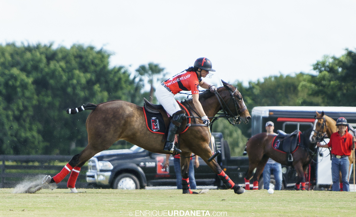 Polo_by_Enrique_Urdaneta_20170112-859.jpg