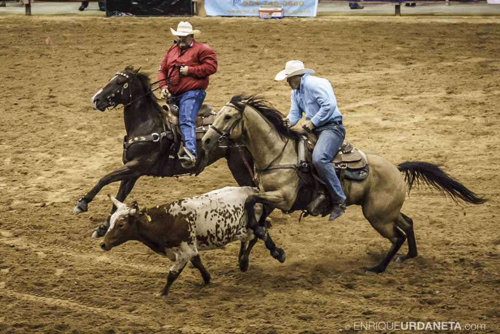 Rodeo_Davie_by_Enrique_Urdaneta_9.jpg