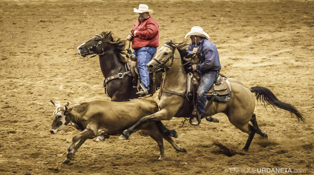 Rodeo_Davie_by_Enrique_Urdaneta_11.jpg