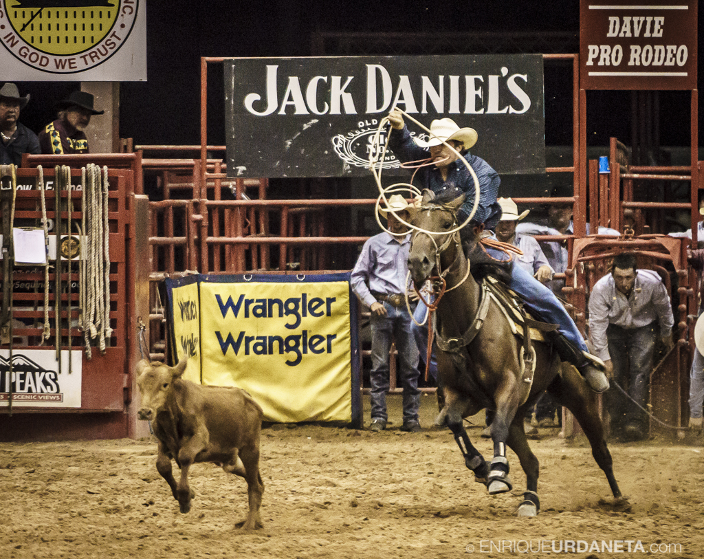 Rodeo_Davie_by_Enrique_Urdaneta_15.jpg