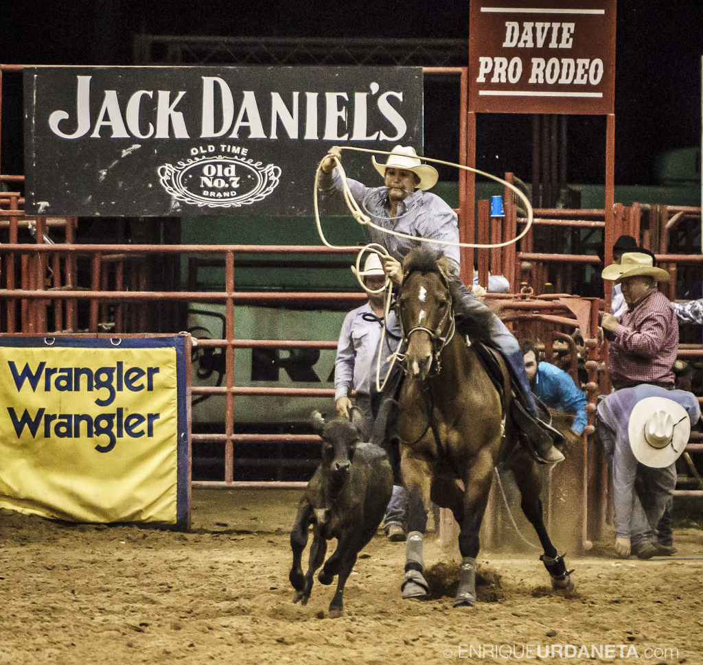 Rodeo_Davie_by_Enrique_Urdaneta_17.jpg
