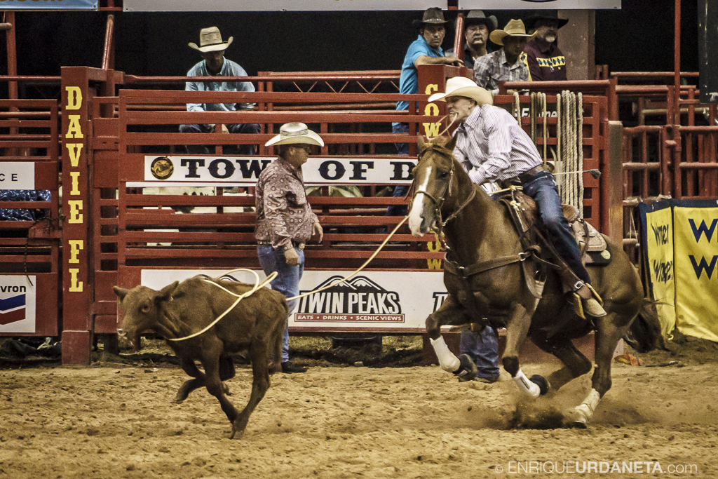 Rodeo_Davie_by_Enrique_Urdaneta_22.jpg