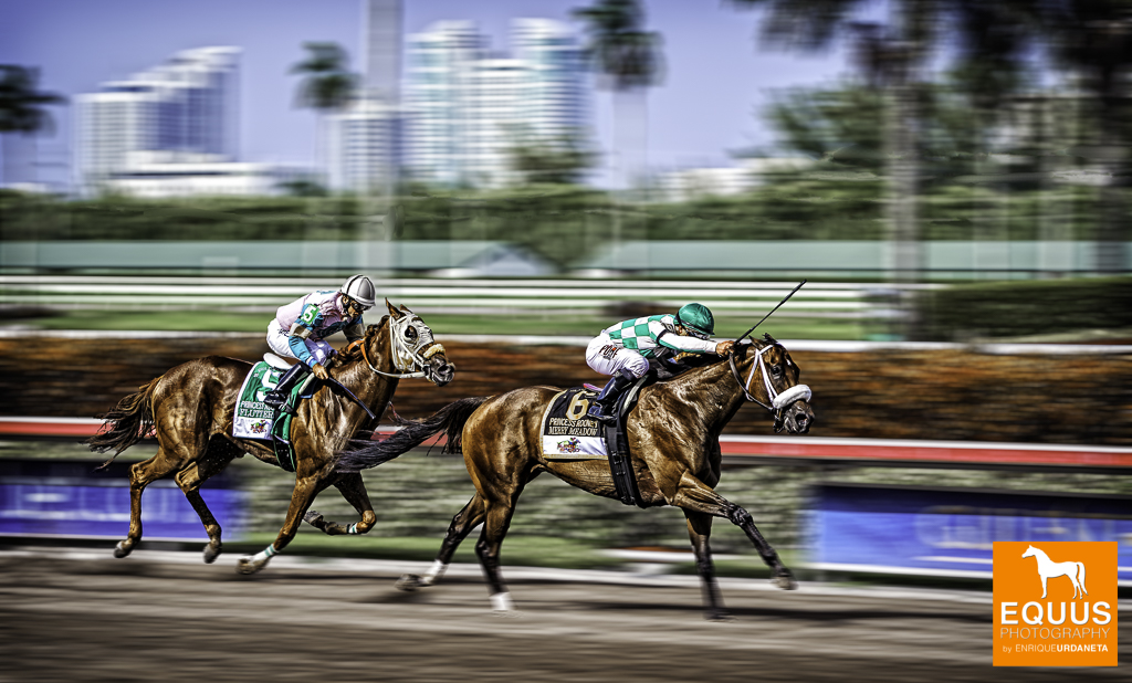 Horse-Fine-Art-Photography-_Enrique_Urdaneta_3.jpg