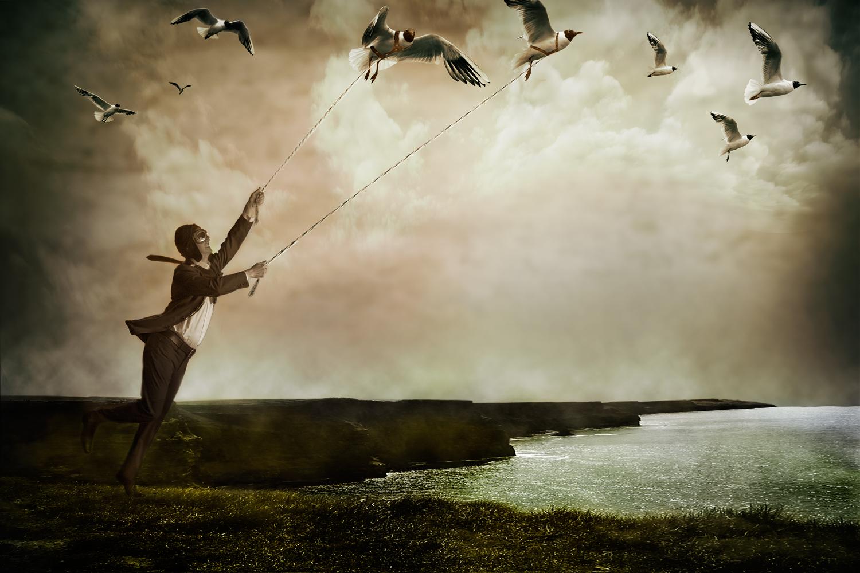 gulls_sharp.jpg