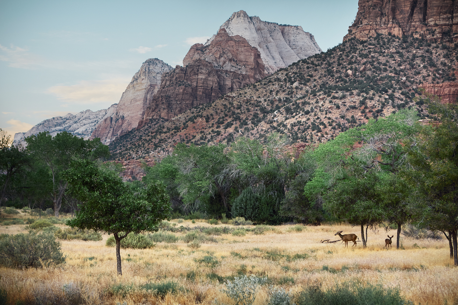 NATIONAL_PARKS_TOUR_2016_1827-v2.jpg
