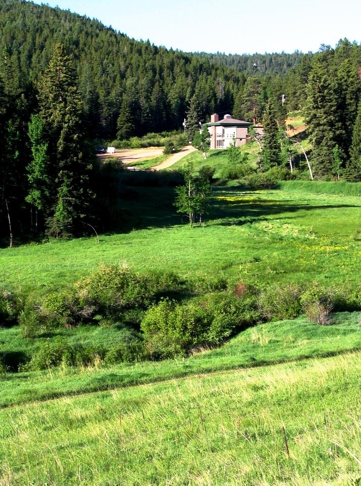 CCP Main Lodge summer meadow.jpg