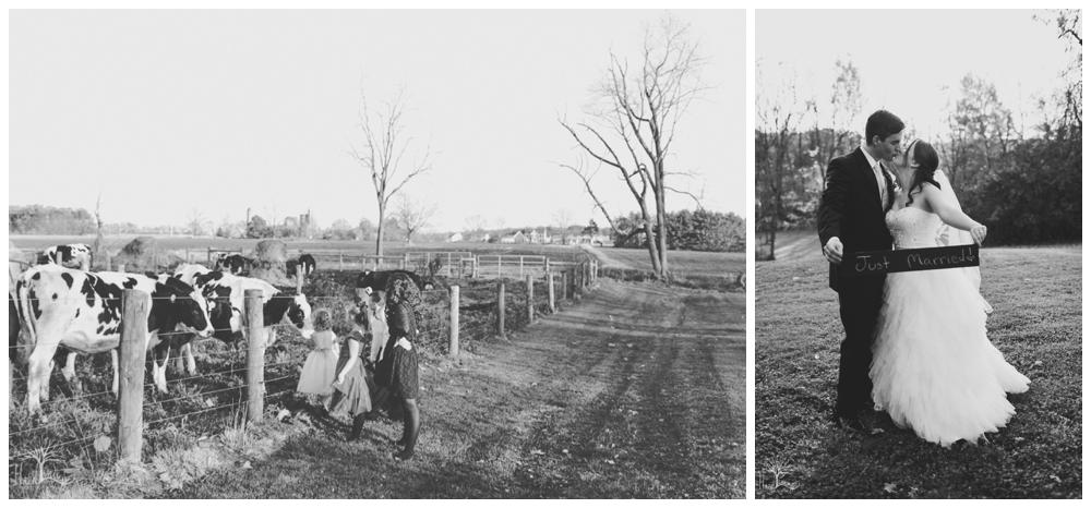 hazel-lining-photography-wedding-portrait-buckscounty-pennsylvania-stephanie-reif_0335.jpg