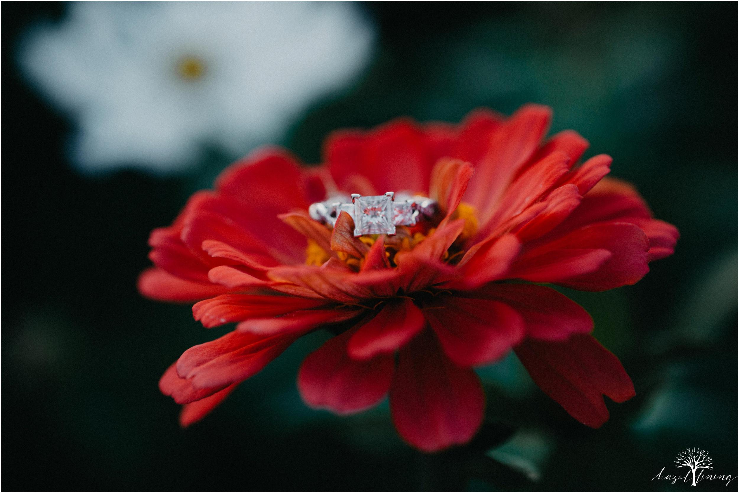 rachel-warner-chris-niedrist-the-farm-bakery-and-events-quakertown-pa-summer-engagement-hazel-lining-photography-destination-elopement-wedding-engagement-photography_0029.jpg