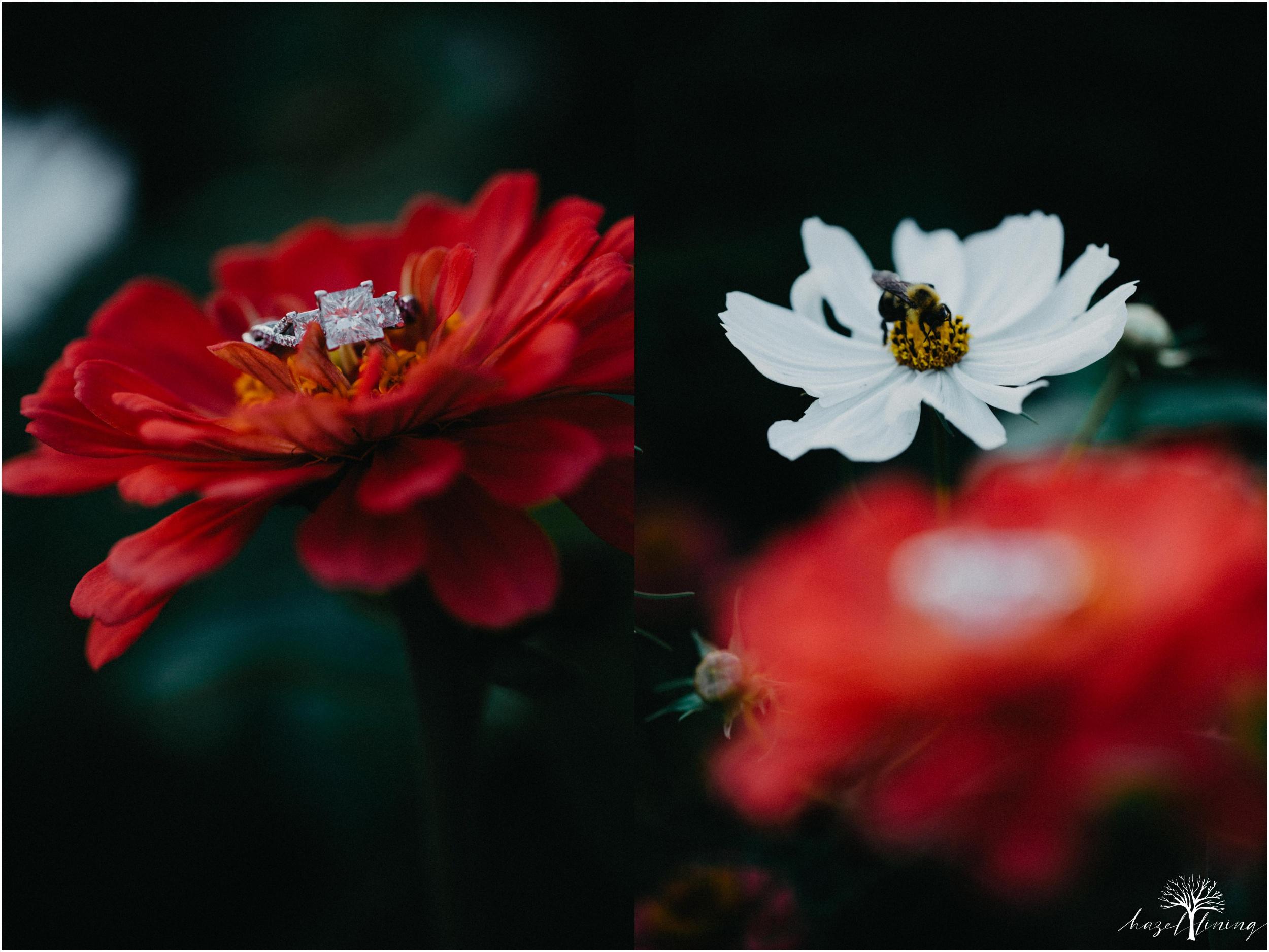 rachel-warner-chris-niedrist-the-farm-bakery-and-events-quakertown-pa-summer-engagement-hazel-lining-photography-destination-elopement-wedding-engagement-photography_0030.jpg