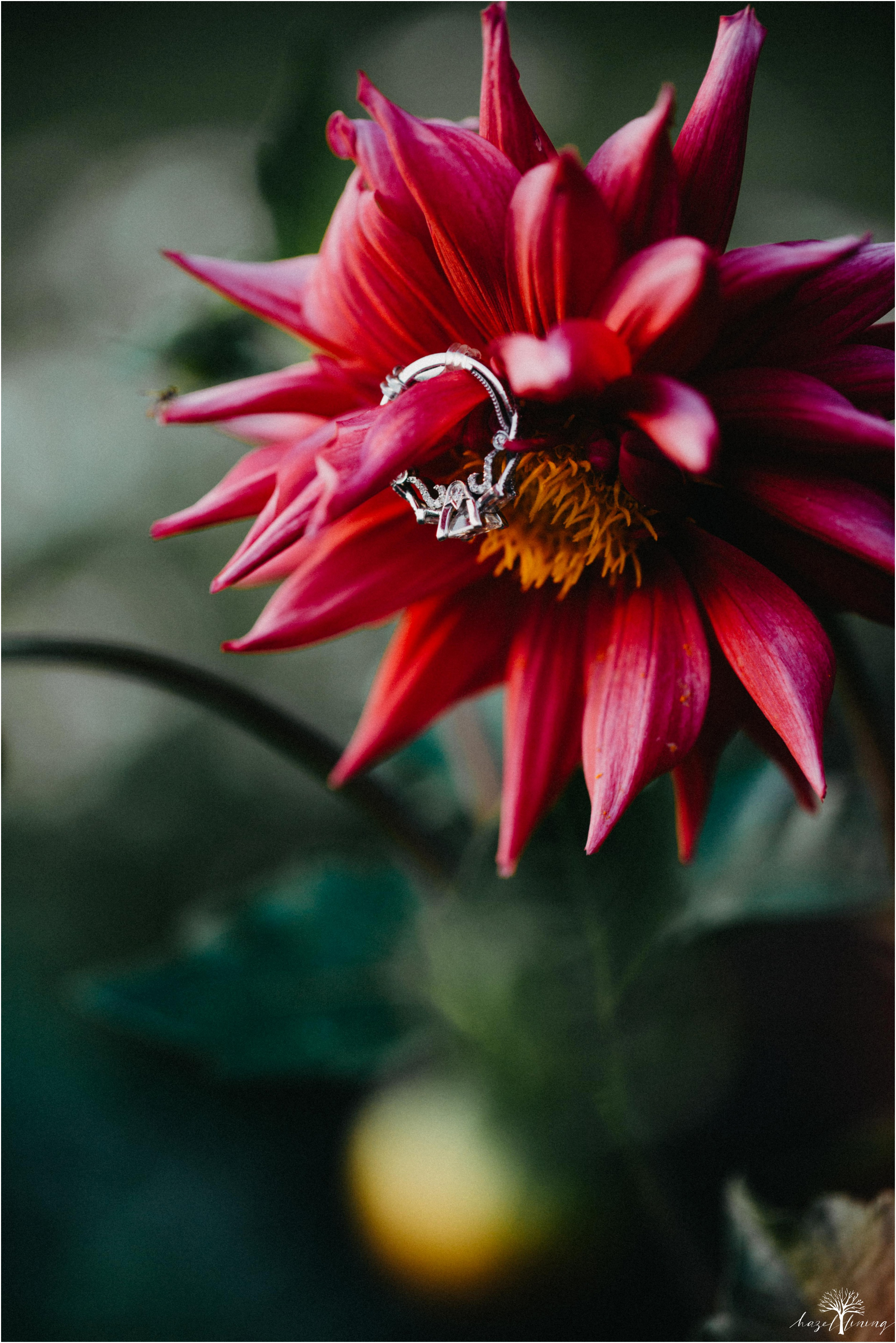 rachel-warner-chris-niedrist-the-farm-bakery-and-events-quakertown-pa-summer-engagement-hazel-lining-photography-destination-elopement-wedding-engagement-photography_0031.jpg