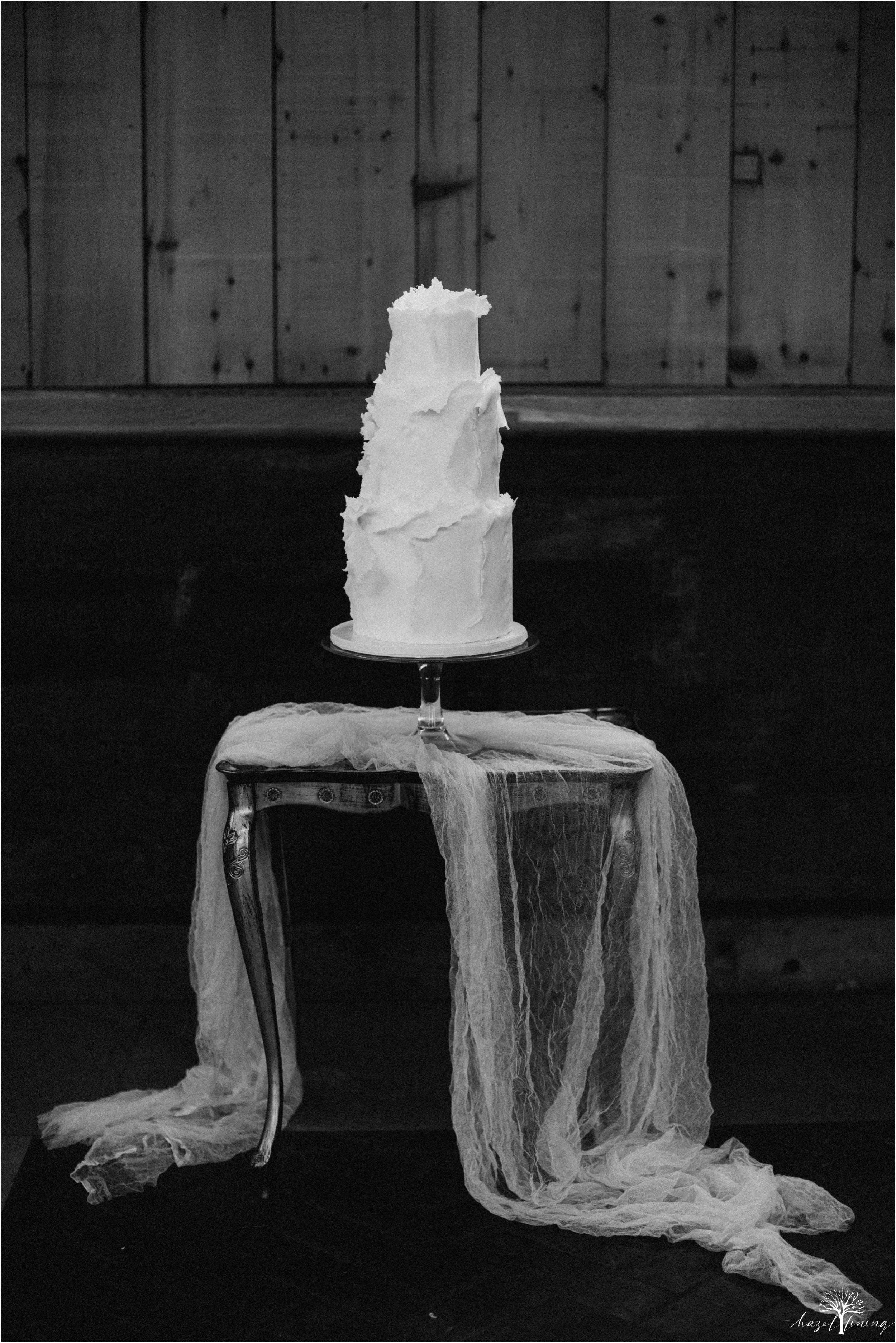 carl-chloe-the-ryland-inn-whitehouse-station-new-jersey-styled-squad-hazel-lining-photography-destination-elopement-wedding-engagement-photography_0010.jpg