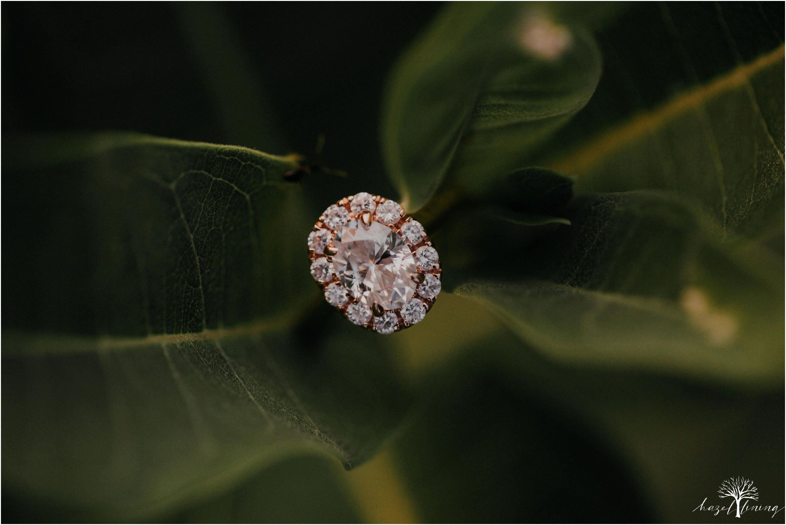 ashley-fillmore-steve-reimer-trexler-nature-preserve-summer-engagement-session-schnecksville-pennsylvania-hazel-lining-photography-destination-elopement-wedding-engagement-photography_0034.jpg
