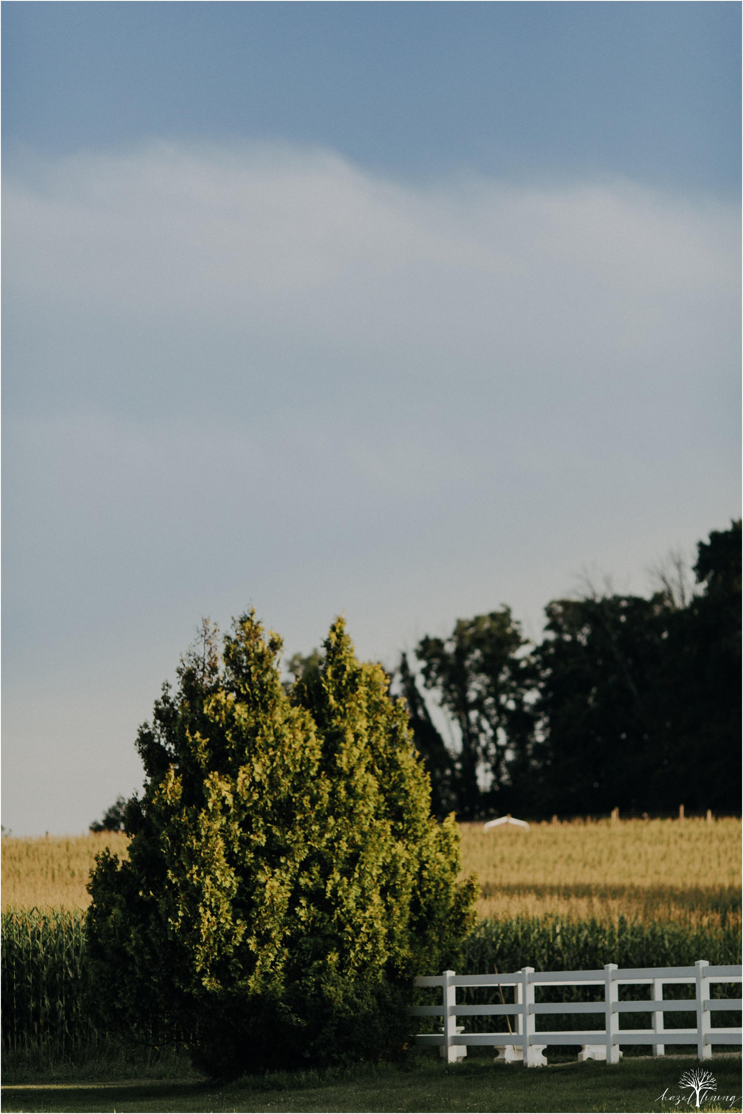 taylor-adams-and-horse-delaware-valley-university-delval-summer-equestrian-portrait-session-hazel-lining-photography-destination-elopement-wedding-engagement-photography_0001.jpg